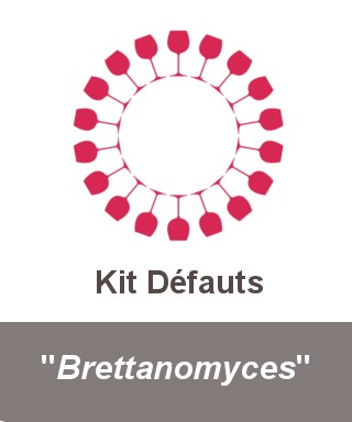 "Kit ""Brettanomyces"""