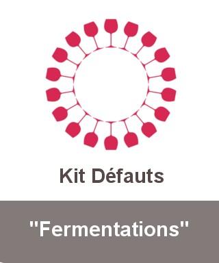 "Kit ""Fermentations"""