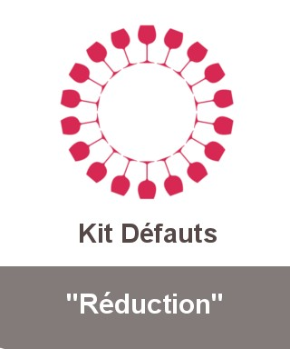"Kit ""Réduction"""