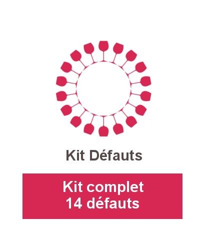 Kit complet 14 défauts